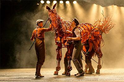 Warhorse.