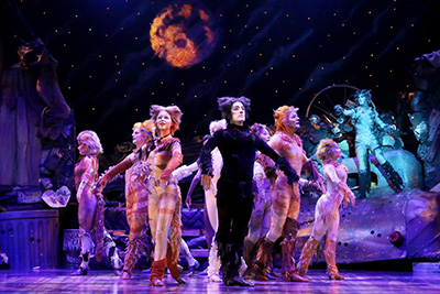 The cast of Cats.  Photo by Curtis Brown.