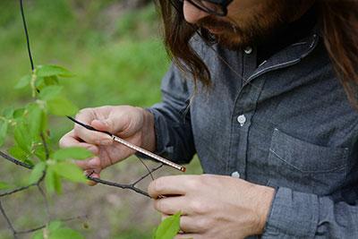 Abinadi Meza attaching flex-sensor to tree. Photo by Brandy Tribble.