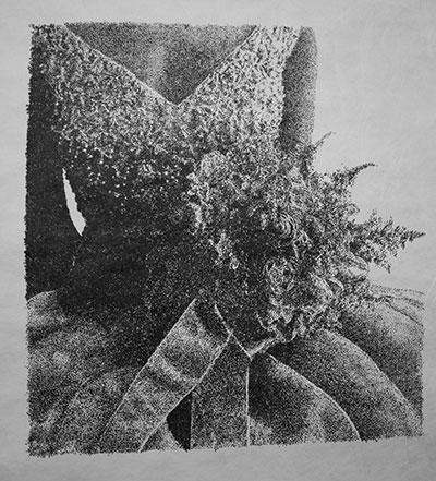 Laura Lark Nettle, 2014 Ink on Tyvek Courtesy of the artist and Devin Borden Gallery.