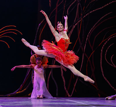 Ballet Austin in The Firebird Photo by Tony Spielberg.
