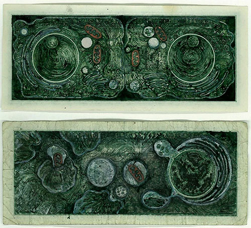Mel Chin, Drawn Currency Series: Apoptosis, 2006. Ink on U.S. currency (1) dollar denomination 2 5/8 x 6 1/8 inches Collection of Jeffrey Beauchamp and the late Toni Beauchamp