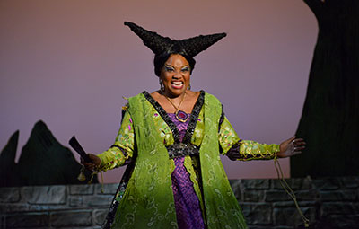 M. Denise Lee in DCT's Rapunzel! Rapunzel! A Very Hairy Fairy Tale Photo by Karen Almond.