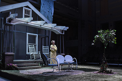 Diana Sheehan in All My Sons. Photo by Karen Almond.