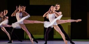 Summer Success: Houston Ballet Triumphs at Hamburg Ballet Days Festival