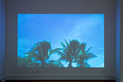 Cassandra Emswiler Burd, Florida, 2013, Single channel video, looped.