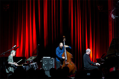 The Necks. Photo by Alan Murphy.
