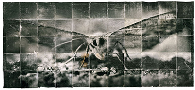 Doug & Mike Starn Attracted to Light 1 from the Absorption of Light series 2002, sulfer toned silver prints, hand-coated on Thai mulberry paper, 10 x 22 feet.
