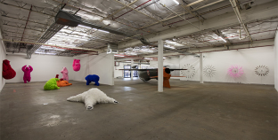 Art Out of Water:  Paola Pivi at Dallas Contemporary