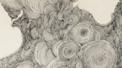 Self-Taught Art: Works from the Stephanie and John Smither Collection at The Menil