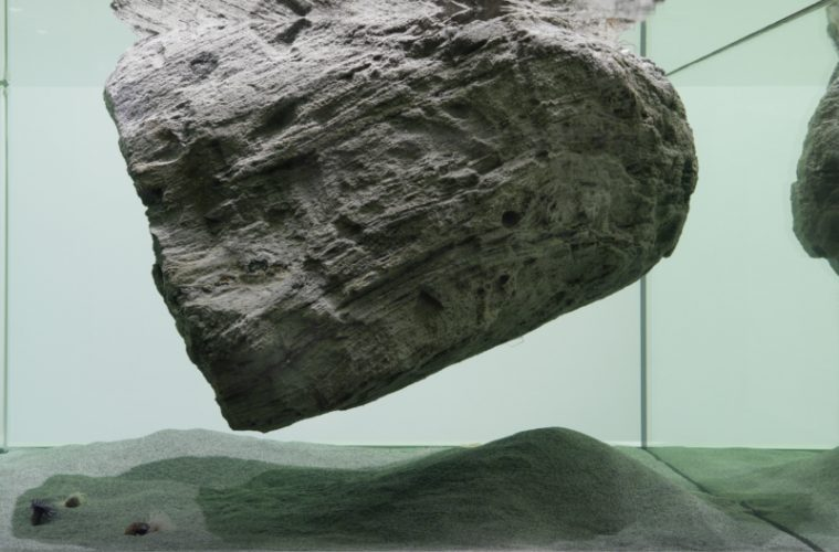 pierre-huyghe-wins-2017-nasher-prize-the-foremost-international-sculpture-honor