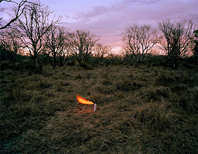 Adam Ekberg, An Aerosol Container in an Abandoned Peach Orchard, 2012, archival pigment print, 30x40, edition 1/3.