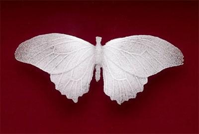 "Michael Crowder, Mariposa mori, detail Glass (pâte de verre), mahogany, felt 23"" x 49"" x 3"""