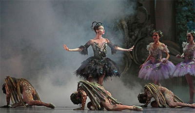 Amy Fote in Ben Stevenson's The Sleeping Beauty. Photo by Amitava Sarkar.