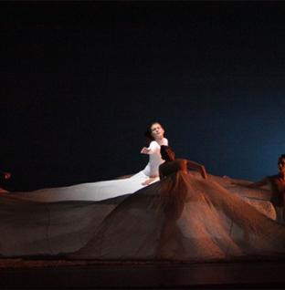 Performania: Texas Dance Ambassadors