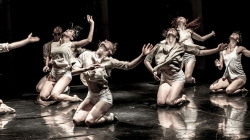 Making Dallas a Global Dance City: A New Season at TITAS Presents