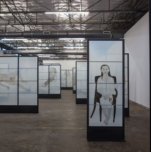 Kiki Smith: <em>Mortal</em> at Dallas Contemporary