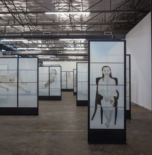 Kiki Smith: <em>Mortal</em> at Dallas Contemporary