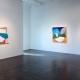 Abstract Horizons: David Aylsworth at Holly Johnson Gallery