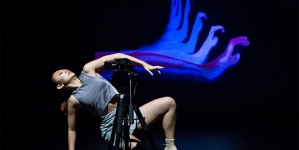 Into the Vortex: NobleMotion Dance Turns Ten